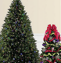 EXTRA 10% off Christmas Trees