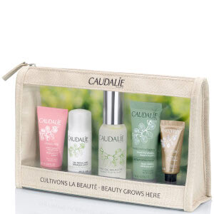 Up to 25% off Holiday Gift Set