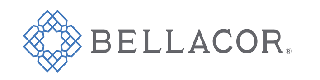 Bellacor logo